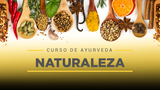 24 Sincroniza con la naturaleza
